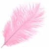 "Ostrich Drab Feathers 6-8"" Premium Quality Baby Pink"